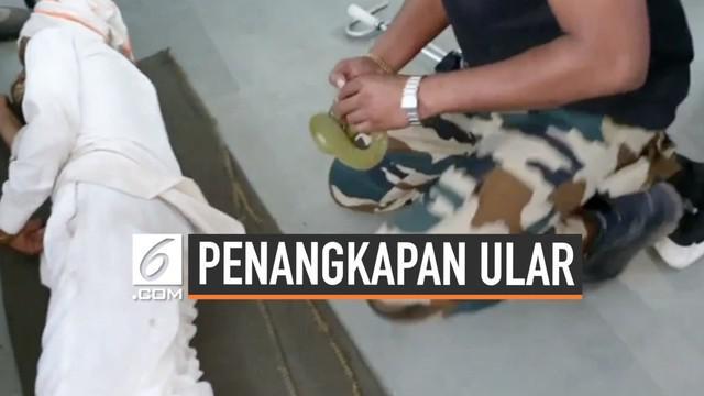 Peristiwa anah sekaligus mengerikan terjadi di salah satu Rumah Sakit India. Seekor ular masuk ke dalam baju seorang pengunjung yang sedang tertidur.