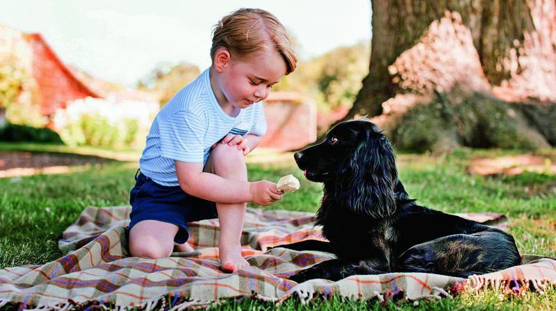 Pangeran George dan anjing keluarga bernama Lupo. (AFP)