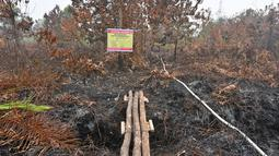Kondisi lahan gambut yang terbakar di Kampar, provinsi Riau pada 17 September 2019. Kebakaran hutan dan lahan (karhutla) yang masih terjadi membuat sejumlah wilayah di Provinsi Riau terpapar kabut asap. (ADEK BERRY / AFP)