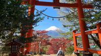 Seorang pria berjalan di bawah tori di kuil Arakura Fuji Sengen saat Gunung Fuji terlihat dari kota Fujiyoshida, prefektur Yamanashi, Jepang, pada Kamis (22/4/2021). Gunung Fuji merupakan gunung tertinggi di Jepang dengan tinggi sekitar 3.776 meter dari atas permukaan laut. (Behrouz MEHRI / AFP)