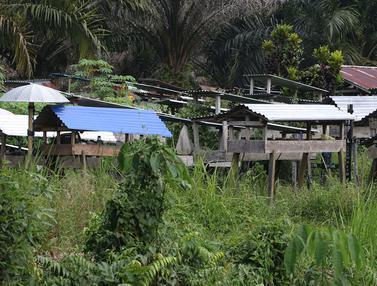 Kuburan Unik Khas Kalimantan