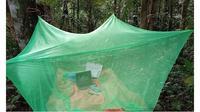 Demi Sinyal Internet Stabil, Mahasiswi Ini Rela Belajar di Tengah Hutan (Sumber: The Star)
