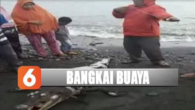 Buaya tersebut kemudian dikuburkan di sekitar pesisir pantai oleh petugas BKSDA Maluku Resort Amahai yang datang ke lokasi.