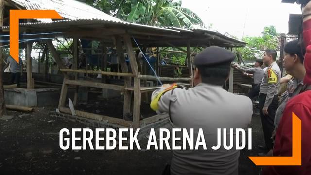 Wali Kota Probolinggo turun langsung gerebek arena judi sabung ayam yang meresahkan.
