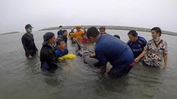 Relawan ThaiWhales dan dokter hewan berupaya menyelamatkan paus pilot jantan yang sakit dan tidak bisa berenang di pesisir pantai di Songkhla, Thailand, Sabtu (2/6). Sekitar 80 kantong plastik ditemukan di dalam perut paus tersebut. (AFP/ThaiWales)
