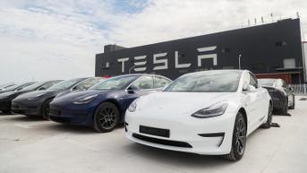 Tesla Mendesak Pemerintah Amerika Terkait Emisi Kendaraan