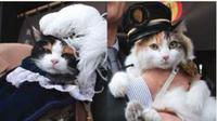 Tama dan Nitama adalah kucing kepala stasiun yang bertugas di Stasiun Kishi, Wakayama. (dok. www.wakayama-dentetsu.co.jp/Dinny Mutiah)