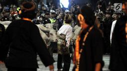 Kawanan Kerbau 'bule' keturunan Kerbau Pusaka Keraton Kyai Slamet mengikuti kirab peringatan 1 Suro di Keraton Kasunanan Surakarta Hadiningrat, Solo, Sabtu (31/8/2019). Kirab memperingati pergantian tahun baru Hijriah yang dalam penanggalan Jawa disebut satu Suro. (merdeka.com/Iqbal S Nugroho)