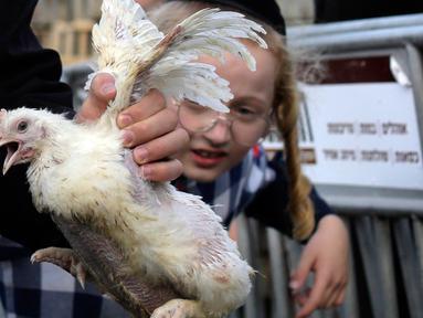 Seorang pria Yahudi ultra-Ortodoks memegang ayam untuk diayunkan di atas kepala keluarganya sebagai bagian dari ritual Kaparot di Yerusalem, Rabu (23/9/2020). Ayam ini kemudian akan disembelih menjadi pengganti seseorang tersebut sebagai penebusan untuk dosa-dosanya.  (AP Photo/Maya Alleruzzo)