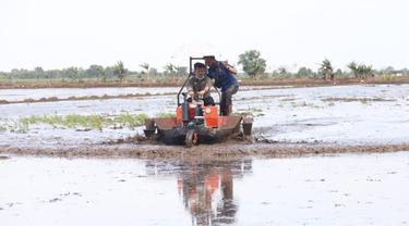 Alsintan Bantu Petani Tanah Datar Sumbar Percepat Garap Lahan Pertanian