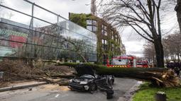 Sebuah mobil yang tertimpa pohon besar di Paris, Kamis (27/2/2020).  Angin kencang menumbangkan pohon besar hingga menimpa sebuah mobil di dekat Menara Eiffel dan menewaskan pengemudi di tempat. (Benoit Moser/BSPP via AP)