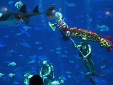 Tarian Naga Dalam Air Sambut Imlek 2020 di Singapura