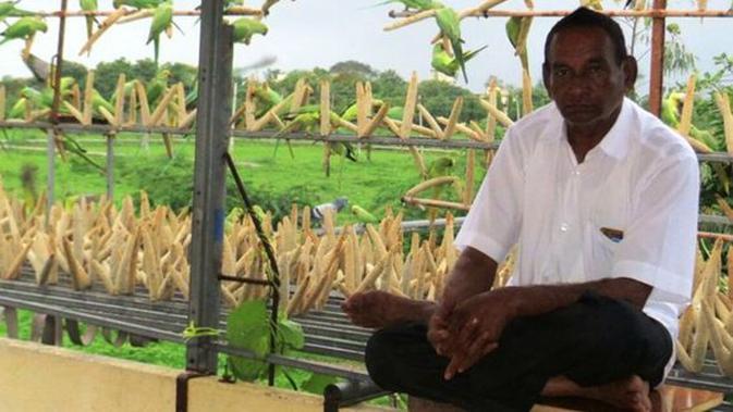 Beri Makan Ribuan Burung Setiap Hari Kisah Pria Ini Menyentuh Hati Lifestyle Fimela Com
