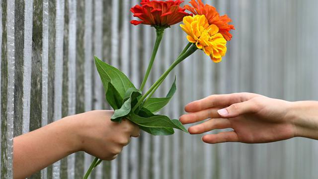 14 Kata Kata Bijak Cinta Sejati Yang Menyentuh Hati