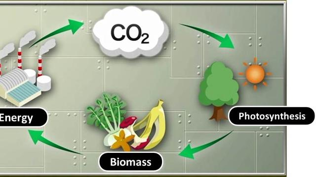 Ilustrasi Biomass Methane | tokyo-gas.co.jp