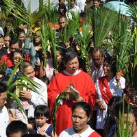 Pada peringatan Minggu Palma, ruang gereja dipenuhi dengan daun palem. Kenapa?