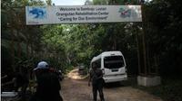 Borneo Orangutan Survival (BOS) Samboja Kutai Kartanegara Kaltim. (Liputan6.com/ABELDA GUNAWAN)