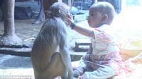 Mereka kerap berpelukan dan bermain bersama di rumah yang terletak di Yamunagar di Haryana, India.