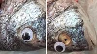 (Foto: © Ayman Mat/Facebook) Supaya ikan dagangan ikannya laku dan terlihat segar, penjual satu ini tempel mata mainan di ikan