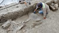 Gambar pada  6 November 2019 menunjukkan ahli membersihkan tulang mammoth yang ditemukan di Tultepec, Meksiko. Tulang belulang itu ditemukan dekat lokasi pemerintah Presiden Andres Manuel Lopez Obrador membangun bandara baru untuk Mexico City. (Photo by HO / INAH / AFP)