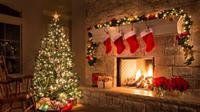 Ilustrasi pohon natal (iStock)