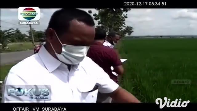Pria berusia 55 tahun ditemukan oleh petani sudah meninggal, karena tersengat aliran listrik yang dipasang di sawah untuk membasmi tikus. Kemudian, Polisi dan petugas PLN melakukan olah TKP di persawahan yang teraliri kawat listrik.