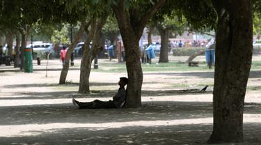 Seorang pria beristirahat di bawah pohon selama musim panas di New Delhi, India (10/6/2019). Kondisi gelombang panas yang parah menyapu bagian utara dan barat India dengan suhu maksimum melonjak hingga 48 derajat Celcius ( 118 F) di beberapa bagian Rajasthan. (AP Photo/Manish Swarup)