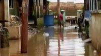 Banjir kembali merendam kampung Arus, Jakarta Timur. Sementara itu dukungan untuk Rio Haryanto berkibar di dunia maya.