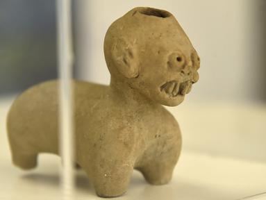 Sebuah patung yang ditemukan di Ekuador ditampilkan di Museum Nasional, Quito, Ekuador, Rabu (25/7). Institut Nasional Warisan Budaya (INPC) telah memulihkan 13 kepingan artefak pra-Hispanik. (Rodrigo BUENDIA/AFP)