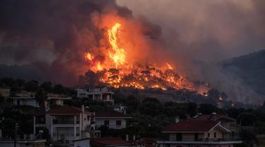 Api membakar di dekat desa Galataki ketika pihak berwenang mengevakuasi tempat di dekat Korintus, Yunani, Rabu, (22/7/2020). Lebih dari 250 petugas pemadam kebakaran, yang didukung oleh pesawat yang jatuh air, berjuang memadamkan kebakaran tersebut. (AP Photo/Petros Giannakouris)