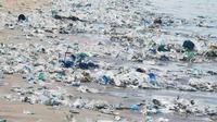 Bibir Pantai Legian, Bali, dipenuhi sampah plastik pada 2 Januari 2021. (dok. Instagram @dinopattidjalal/https://www.instagram.com/p/CJhwaEMgy3c/?igshid=cz2whi1nw3ww)
