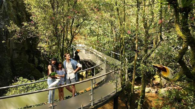 6 Wisata Cisarua Bogor Paling Seru Dan Pilihan Villa Yang