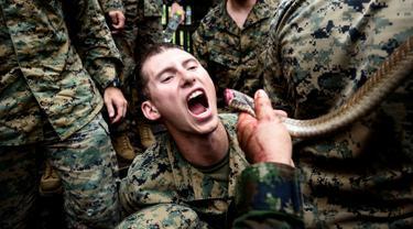 Anggota Marinir AS meminum darah ular kobra saat latihan militer gabungan Cobra Gold antara militer AS dan Thailand di Chonburi, Thailand (19/2). Saat latihan para marinir meminum darah kobra untuk bertahan hidup. (AFP Photo/Lilian Suwanrumpha)