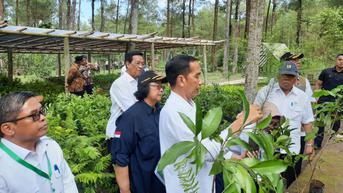 Kunjungan ke Cilacap, Jokowi Akan Tanam Mangrove hingga Tinjau Vaksinasi Covid-19