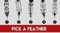 Dengan memilih satu dari lima macam bulu yang berbeda, kami dapat menganalisis seperti apa kepribadian Anda sebenarnya.