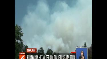 Tiupan angin kencang dan luasnya areal yang terbakar serta sulitnya sumber air membuat petugas kewalahan meredam amukan si jago merah.