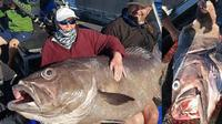 Setelah 40 menit 'berkelahi' akhirnya wanita berusia 68 tahun ini berhasil menaklukkan ikan rasa. (Foto: online photo)