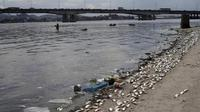Atlet Olahraga Air Olimpiade Diminta Menutup Mulut Selama Tanding (Reuters)