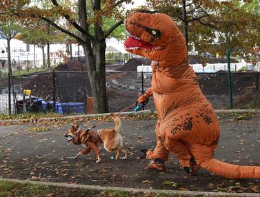 Parade Halloween khusus anjing