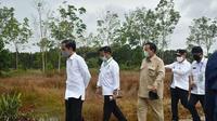 Menteri Pertanian (Mentan) Syahrul Yasin Limpo bersama Presiden Jokowi dan Menteri Kabinet Indonesia Maju saat meninjau pengembangan program food estate di Kalimantan Selatan.