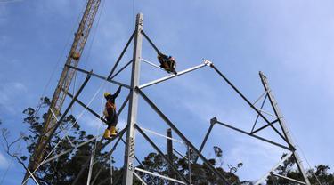 PLN Operasikan SUTT 150 kV Rantau Dadap - Lumut Balai. Dok PLN