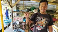 Sobri, salah satu pengusaha lobster asal taman Manalusu, Cikelet, Garut, Jawa Barat, menunjukan lobster ukuran sedang, hasil tangkapan nelayan (Liputan6.com/Jayadi Supriadin)