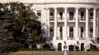 Sebagian dari pohon Magnolia Jackson di sisi barat halaman Gedung Putih yang telah ditanam sejak tahun 1835, Selasa (26/12). Ibu negara AS, Melania Trump memerintahkan untuk menebang pohon magnolia berusia dua abad tersebut. (AP/Andrew Harnik)