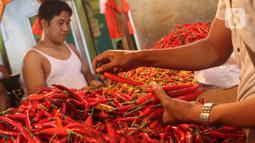 Warga memilah cabai merah yang akan dibelinya di Pasar Senen, Jakarta, Selasa (14/1/2020). Pada musim penghujan tahun ini harga berbagai macam cabai di pasar tersebut  meroket dari hanya Rp20 ribu per kilogram naik hampir mencapai Rp80 ribu. (Liputan6.com/Angga Yuniar)