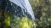 Pada musim hujan bakteri mudah berkembang biak dan mempengaruhi kesehatan seseorang