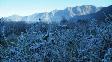 Fenomena Embun Es di Gunung Bromo