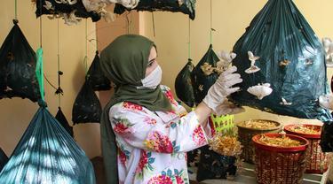 Alaa al-Masry memeriksa jamur tiram di kediamannya di Gaza City, Palestina, Minggu (8/3/2020). Alaa al-Masry memanen sekitar 150 kilogram jamur tiram organik setelah melakukan budi daya selama sebulan. (Xinhua/Rizek Abdeljawad)