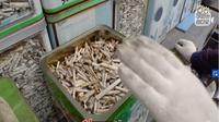 Seorang pria tua asal Korea Selatan berhasil mengumpulkan 1.524.000 puntung rokok selama 4 tahun 7 bulan. (Print screen SBS Video)
