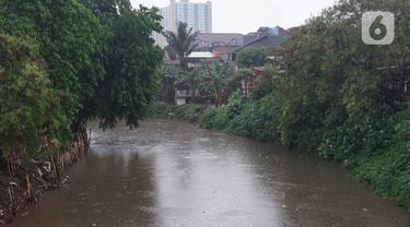 Suasana aliran Sungai Ciliwung di kawasan Rawajati, Jakarta, Selasa (17/12/2019). Hujan deras yang mengguyur Jakarta sejak siang menyebabkan debit air Sungai Ciliwung mulai mengalami kenaikan, namun masih terpantau normal. (Liputan6.com/Immanuel Antonius)