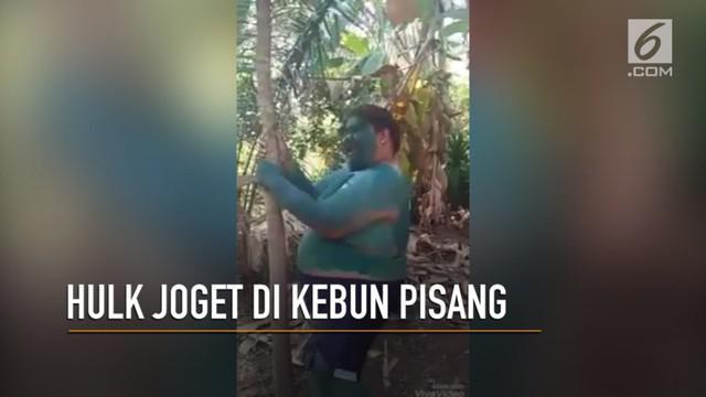 Video Hulk gadungan joget di kebun pisang bikin warganet ngakak.